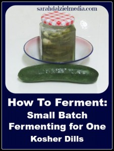 How To Ferment Food_Kosher Dills for One