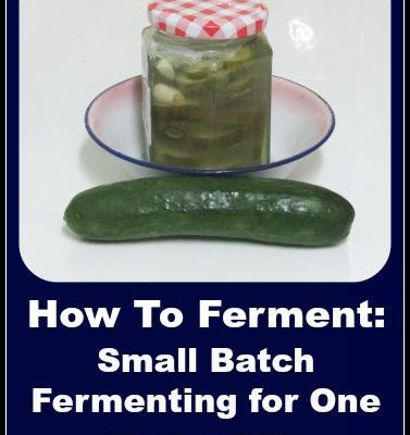 How to Ferment Food: Small Batch Fermentation for One