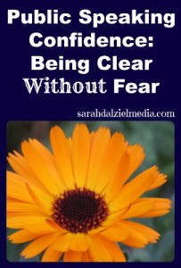 Public Speaking with Confidence: Being Clear without Fear
