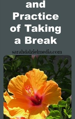 The Art and Value of Taking a Break