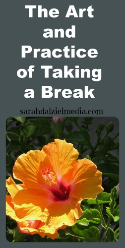 the art and practice of taking a break